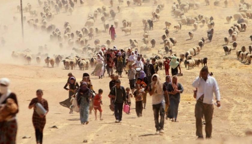 Migrazione e negazione